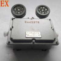 中沈防爆CBBJ 防爆LED双头应急灯CBBJ-2X20双头应急灯